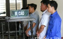 Xử phúc thẩm vụ lật xe gỗ lậu làm 10 người chết ở Nghệ An