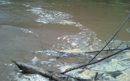 Lào Cai: Lũ trên sông Chảy đạt báo động 2
