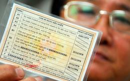 Từ 1/3/2014, tất cả giấy phép lái xe đổi sang mẫu mới