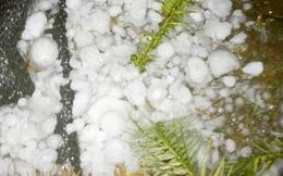 Lào Cai hứng chịu mưa đá có kích cỡ lớn và dày đặc