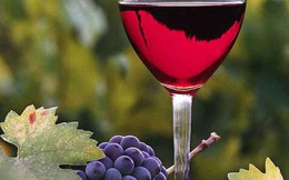 Chuyên gia chia sẻ kinh nghiệm chọn rượu an toàn dịp Tết