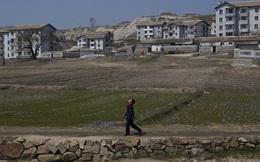 Chuyến du hành đặc biệt đến Triều Tiên: Những sắc màu ở Kaesong