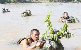 Sư đoàn 9 diễn tập chiến thuật cấp đại đội, tiểu đoàn có bắn đạn thật