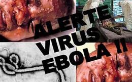 Nguyên nhân kinh hoàng khiến người chết bởi Ebola tiếp tục tăng