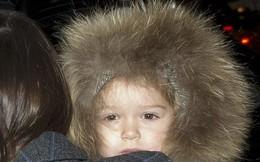 Nhà Beckham để con gái lạnh co rúm