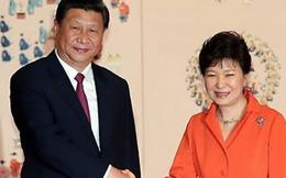 """Trung Quốc và những lần bẽ mặt vì """"ngoại giao gấu trúc"""""""
