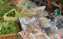 Nấm giá rẻ, tươi lâu, không rõ xuất xứ tràn lan ở chợ