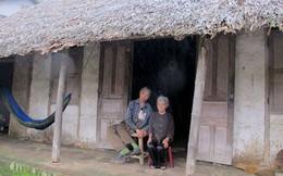 Mẹ già 81 tuổi nuôi con tàn tật