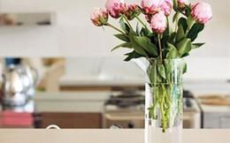 4 mẹo diệt khuẩn cho vật dụng trong nhà bạn nên biết