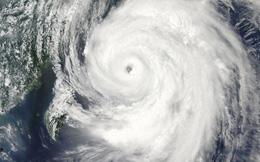 Sức tàn phá khủng khiếp của siêu bão tấn công Nhật Bản