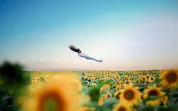 Tạo dáng kỳ lạ của 2 nữ sinh Nghệ An trên đồng hoa hướng dương