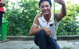 Nghệ An: Cả làng đi bắt đàn rắn cực độc giao nộp xã