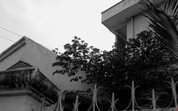 Cảnh hoang lạnh tại Bưu điện Cầu Voi sau vụ án Hồ Duy Hải