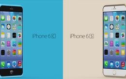 """""""Lặng người"""" ngắm thiết kế tuyệt đẹp của iPhone 6S, 6C"""