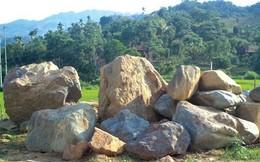 Đại gia rủ nhau về Nghệ An săn đá phong thủy giá chục triệu
