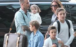 """Rộ tin vợ Beckham sẽ sinh thêm em bé vì """"cô út"""" Harper Seven"""