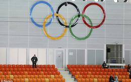 Cám cảnh Olympic Sochi: Ghế trống bất tận!