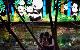 24h qua ảnh: Cặp đôi hôn nhau ở lễ hội đèn lồng Hàn Quốc