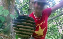 Chùm ảnh kinh hoàng tẩm thuốc độc Trung Quốc để bắt ong rừng