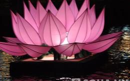7 bông hoa sen khổng lồ xuất hiện giữa Sài Gòn