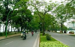 Ai đặt tên cho con đường lãng mạn nhất Hà Nội?