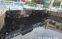 Nước cạn, cá chết nổi trắng kênh Nhiêu Lộc- Thị Nghè