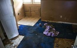 Xác phân hủy bốc mùi trong nhà mẹ mới biết là con trai chết