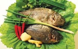 Cá rô đồng: Món ăn - bài thuốc hỗ trợ điều trị bệnh gút hiệu quả