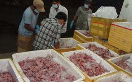 Bắt giữ 1,3 tấn thịt chim cút trong thùng xốp