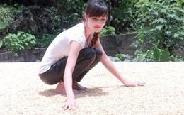 Vớt vát bằng hình ảnh thôn nữ phơi ngô, Triệu Thị Hà được gì?