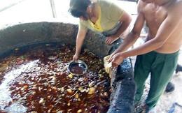 """Dưa chuột, thịt lợn đóng hộp chứa dầu ăn """"bẩn"""" nhập vào Việt Nam"""