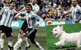 Clip vui: Sao bóng đá làm gì khi những chú cún ghé thăm SVĐ?