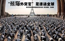 """Gấu trúc: Hành trình từ quái thú đến """"quốc bảo"""" Trung Quốc"""