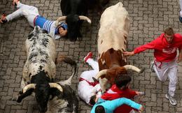Cận cảnh bò húc người trong lễ hội đấu bò tại Tây Ban Nha