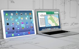 iPad màn hình khủng 12,9 inch sẽ không ra mắt trong năm nay