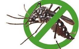 Ăn canh nêm... thuốc diệt muỗi, cả nhà ngộ độc