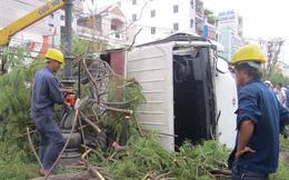 Ô tô tông bật gốc cây lớn, tài xế mắc kẹt trong cabin