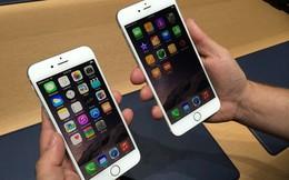 iPhone 6, iPhone 6 Plus ở đâu rẻ nhất?