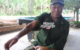 Chuyện ở rừng chim thú: Trận chiến với lợn thành tinh