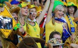 """""""Đến"""" Brazil tận hưởng World Cup 2014 với giá siêu bèo!"""
