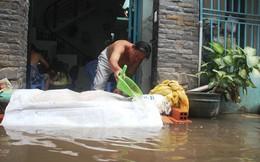 Sau một trận mưa, cả khu dân cư phải tát nước cả ngày