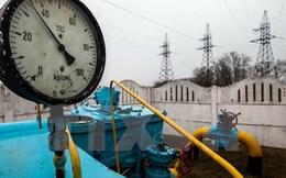 Chính phủ Ukraine bị tố đã biển thủ 3,1 tỷ mét khối khí đốt