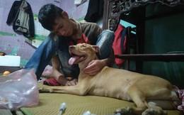 Gia cảnh nghèo túng của thanh niên cầm sổ hộ khẩu chữa bệnh cho chó