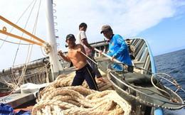 """Một tuần đánh cá giữa Hoàng Sa cùng """"ngư dân VIP"""""""