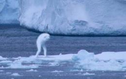 Quái vật giống người ở Nam Cực gây xôn xao cộng đồng mạng