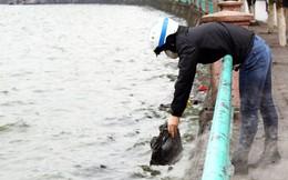 """Sông, hồ thành """"bãi rác"""" vì phóng sinh cá chép cho Táo quân"""