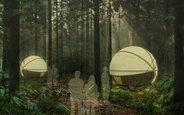 """Độc đáo """"nhà nghỉ"""" treo lơ lửng giữa rừng"""