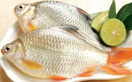Cá diếc và những bài thuốc tuyệt vời cho sức khỏe
