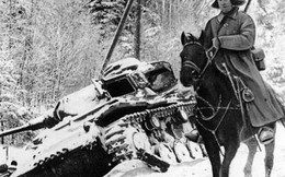 Cuộc chiến cuối cùng của kỵ binh