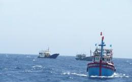 Tàu cá bị lốc đánh chìm, 32 người rơi xuống biển